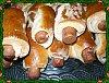 Eu Fiz Barriguitas de Salsicha-p1000108.jpg