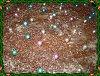 Eu Fiz Bolo de Chocolate Molhadinho-p1000114.jpg