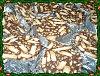 Eu Fiz Salame Natalício-p1000210.jpg