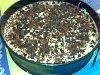 Eu Fiz Banoffee Pie-05022001.jpg